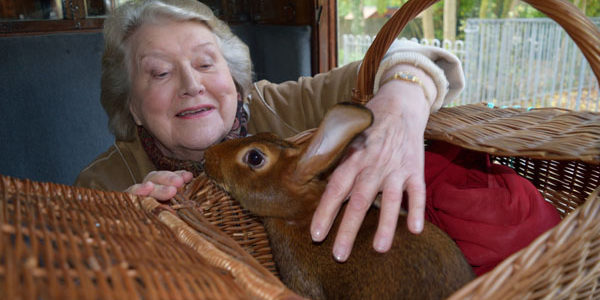 Beatrix Potter with Patricia Routledge: Charming Documentary Coming to Public TV Stations